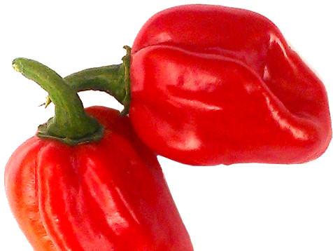 червено хабанеро