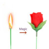 Горяща роза1